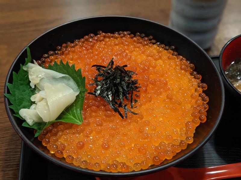 """金沢エリアでイクラ丼を食べるならここが最適解!?まさかのダークホース""""弁吉""""のいくら丼が安旨!"""